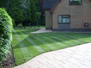 Garden-Turf